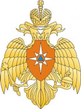 Логотип МЧС одноцветный серый